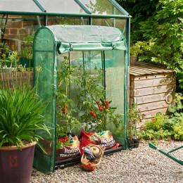Gi premium tomato growhouse