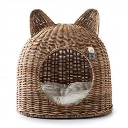 Lovely kitten cat house