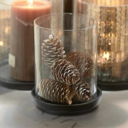 Celebrate winter pinecones