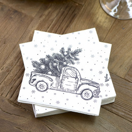 Paper napkin party pickup