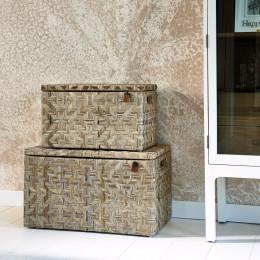 Port barton trunk medium