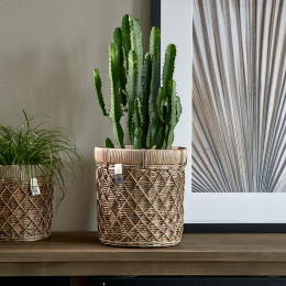 Rr diamond weave planter m