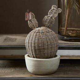 Rustic rattan prickly pear cactus