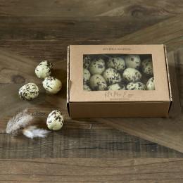 Rm mini eggs decoration
