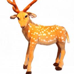 75cm standing deer
